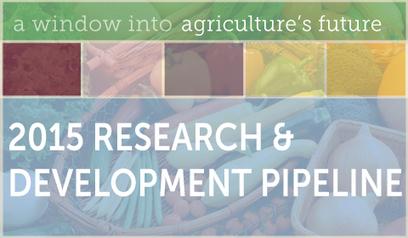 Monsanto's Corn Research & Development  Pipeline 2015   MAIZE   Scoop.it