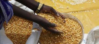 Spéculation alimentaire : les grandes banques européennes reculent | Oxfam International | Intervalles | Scoop.it