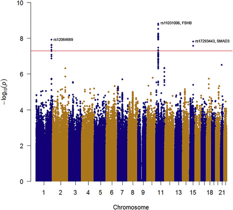 Identification of Common Genetic Variants Influencing Spontaneous Dizygotic Twinning and Female Fertility | Genomic and precision medicine | Scoop.it