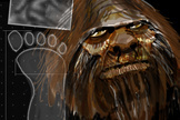 'Bigfoot' Is Part Human, DNA Study Claims   Science H   Scoop.it
