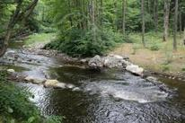 Sawmill River returns to more natural course - The Recorder | Fish Habitat | Scoop.it