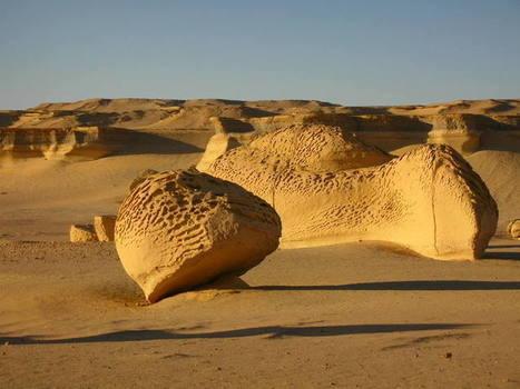 Wadi Al-Hitan (La vallée des Baleines) - UNESCO World Heritage Centre | Les déserts dans le monde | Scoop.it