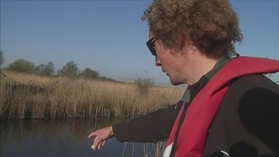 JIC mention: Toxic algae killing thousands of fish on the Norfolk Broads | BIOSCIENCE NEWS | Scoop.it