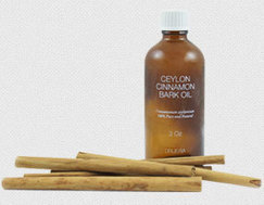 Ceylon Cinnamon Oil With Its Impeccable Healthy Benefits and Features | Healthy And Fit | Scoop.it