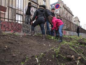 Quand l'agriculture urbaine réinvente la ville   Agriculture urbaine   Scoop.it