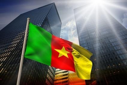 Cameroun, Gabon, Congo, Tchad : 4 pays d'Afrique centrale qui montent | Export, International, B2B, Business development | Scoop.it