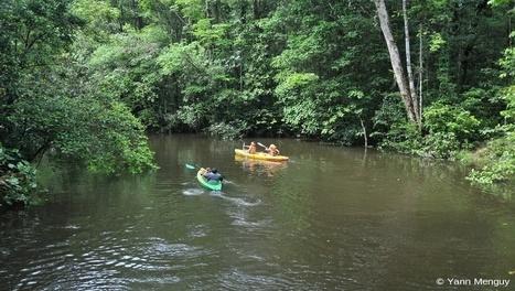 Carnet de voyage en Guyane, première étape : « Le Camp Cariacou »   La Guyane   Scoop.it