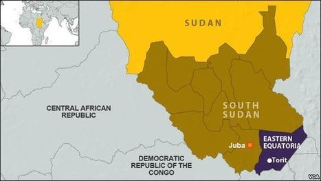 Illegal Logging Threatens South Sudan Forests | Natural resources | Scoop.it