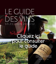 Côtes du Rhône: Un millésime 2011 tout en ... - Cuvelier & Fauvarque | oenologie en pays viennois | Scoop.it