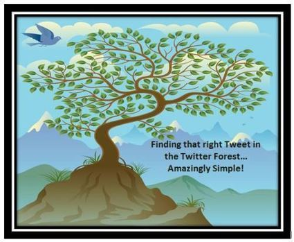- Part 1… Amazing Twitter Secrets For Educators… Twitter's Advanced Link… Amazingly Simple! | Information for Librarians | Scoop.it