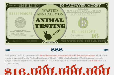 25 Animal Experimentation Statistics and Facts   About Science   Scoop.it