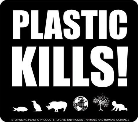 Plastic Is Dangerous: Stay Safe | SafetyKart | Scoop.it