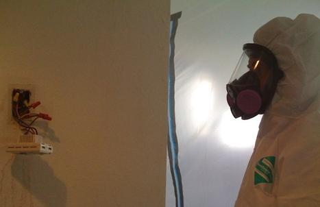 How to Prevent Bathroom Mold - Orange County Mold Removal   Gregory Restoration   Gregory Restoration   Scoop.it