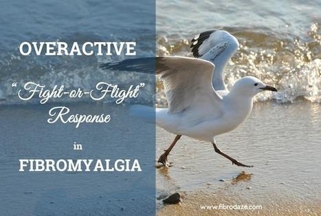 Fight or Flight Response Overactive In Fibromyalgia » | Fibromyalgia | Scoop.it