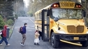 Child Safety in Georgia - School Bus Transportation | Improving School Bus Safety in Georgia Schools | Scoop.it