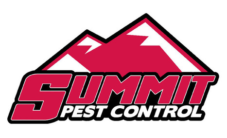 Pest Control & Exterminator Services Okc | Business | Scoop.it