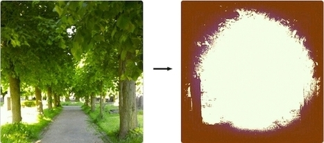 What Happens When You Apply Every Instagram Filter to a Photo? - Forbes | The Matteo Rossini Post | Scoop.it