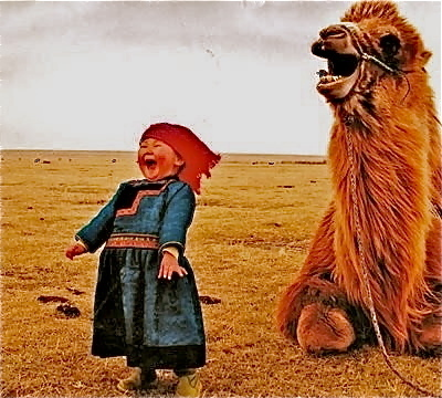 Humour in the steppes of Mongolia | Geography Education | Scoop.it