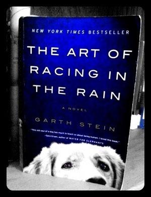 The Art of Racing in the Rain is an EndearingTail   Read Ye, Read Ye   Scoop.it