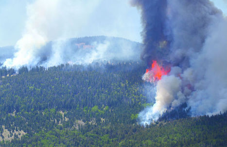 Experts debate challenges of adapting to wildfires | Santa Fe (NM) New Mexican | CALS in the News | Scoop.it