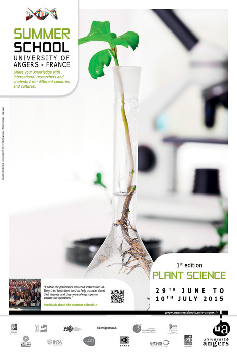 Plant Science Summer School - University of Angers, Fr. | Effectors and Plant Immunity | Scoop.it