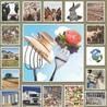 De la Fourche à la Fourchette (Agriculture Agroalimentaire)