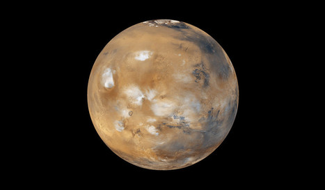 Life From Mars | Space Exploration & Colonization | Scoop.it