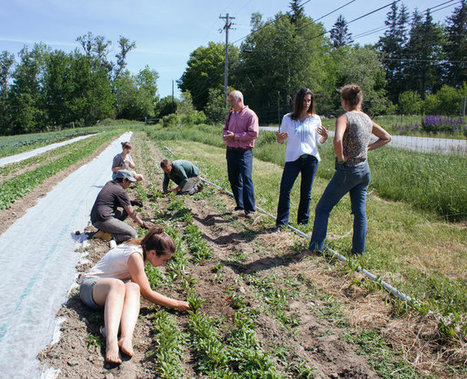 A College in Maine That Tackles Climate Change, One Class at a Time | SCUP Links | Scoop.it