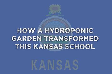 How A Hydroponic Garden Transformed This Kansas School | Vertical Farm - Food Factory | Scoop.it