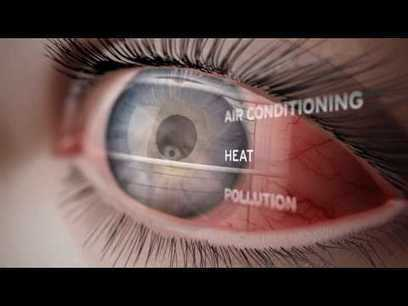 A Journey Through the Human Eye: How We See | Improve Eyesight Remedies | Scoop.it