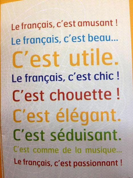 Le français et vous — Et pour vous, le français c'est quoi? | FLE FANNY | Scoop.it