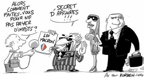 L'immunité Macron   16s3d: Bestioles, opinions & pétitions   Scoop.it