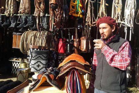 Jinetes sobre caballos chúcaros brillaron en la fiesta ganadera - Los Andes (Argentina) | Caballo, Caballos | Scoop.it