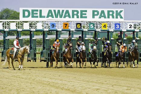 Delaware Park To Host PDJF Benefit Sept. 24 - Horse Racing News   Paulick Report   Racing Business   Scoop.it