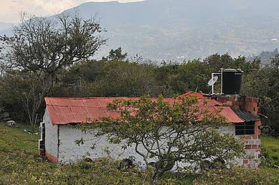 Estándares para evaluar rayos no son apropiados para Colombia | Infraestructura Sostenible | Scoop.it