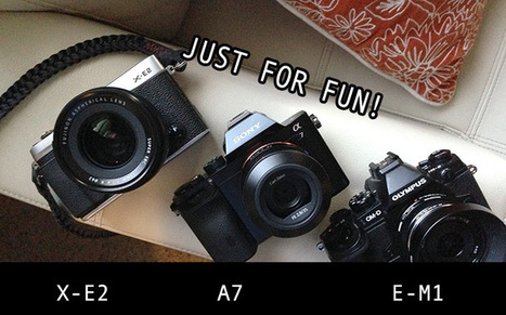 Quick Comparison: Fuji X-E2, Sony A7 and Olympus E-M1 | Steve Huff | Fuji X-Pro1 | Scoop.it
