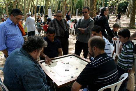 Campionat de Carrom a Santa Coloma de Farners | Juganet | Comarca La Selva hibridbrainstorming | Scoop.it