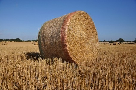 German Scientists Believe Straw Could be Used to Power Millions of Homes | Sustain Our Earth | Scoop.it