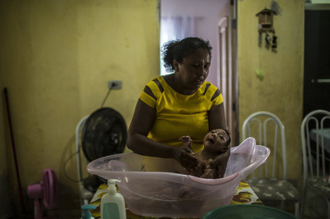 The Brazilian Doctors Who Sounded the Alarm on Zika and Microcephaly | Ebola, MERS, H7N9 & Other High Risk Viruses - Progress, Knowledge & Treatment | Scoop.it