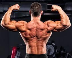 Claim your Trial and get real Body Building Result | Supports healthy energy levels | Scoop.it
