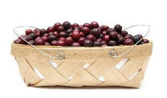Wan to know the Nutrients in Muscadine Grapes? | Muscadinex Longevity | Scoop.it