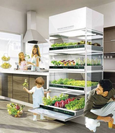 What If You Could Grow Fresh Organic Veggies & Herbs Right In Your Kitchen? You Can! | Tilapia et jardin | Scoop.it