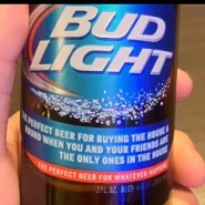 Budweiser says Super Bowl digital strategy as important as ad buy - Mobile Marketer - Advertising | Event Social Media & Technology | Scoop.it