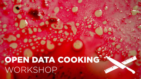 Data Cuisine | Open Data Cooking Workshop | e-merging Knowledge | Scoop.it