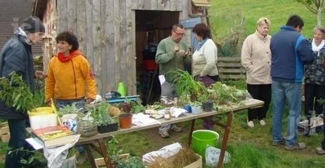 Un troc de plantes organisé au Jardin partagé | (Culture)s (Urbaine)s | Scoop.it