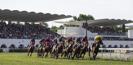 El Hipódromo de la Zarzuela celebra su 75º aniversario | Aire libre, Animales | Turf | Scoop.it