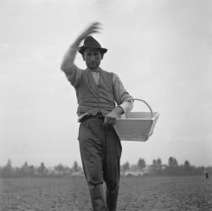 RESOURCE CRISIS: The sower's strategy: how to speed up the sustainable energy transition | IBIN Sustainable Energy News | Scoop.it