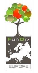 FunDivEurope mide la importancia de la biodiversidad forestal en los servicios ecosistémicos   Infraestructura Sostenible   Scoop.it