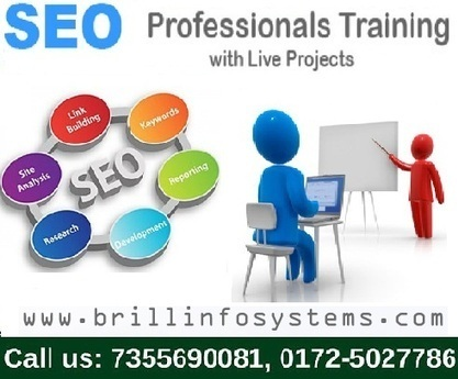 SEO Industrial Training in Chandigarh | Brill Infosystems | Scoop.it