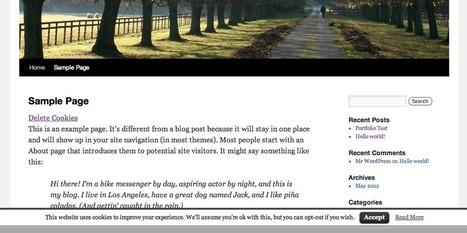 3 plugins pour mettre votre blog wordpress en conformité avec la loi sur les cookies | Les outils du Web 2.0 | Scoop.it